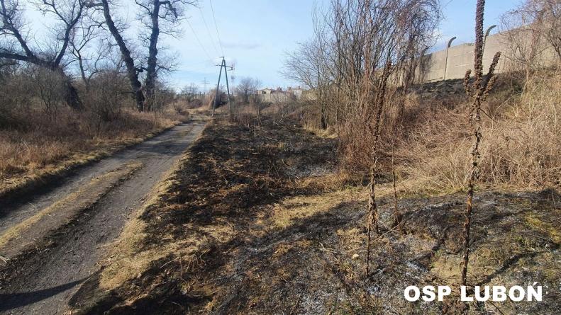 Pożar trawy na Armii Poznań